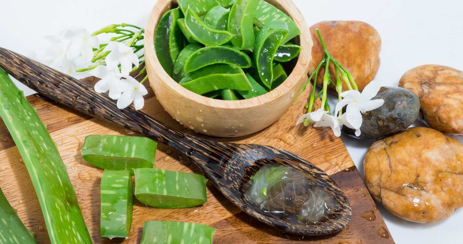 Sommer-Massage Aloe Vera Massage hat ihren Ursprung in der traditionellen Thai-Massage